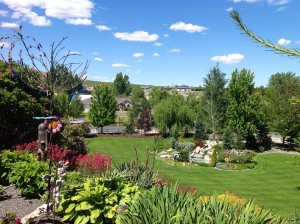 Garden with a View!