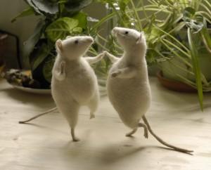 mice dancing