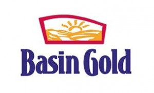 basin-gold_e036fa721b101c736d6a3539b13cbc6a